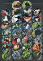 30 KRD Schweiz - Pro Specie Rara - 1438 A - Gastro