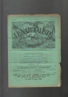 """Revue """"LE NATURALISTE"""" N°470 Du 01/10/1906 Animaux Mythologiques, Feux Et Fumées Dans La Désinfection, Maladie Vigne All - Wissenschaft"""