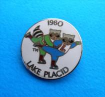 FIGURE SKATING - OLYMPIC GAMES LAKE PLACID 1980. Pin Badge Patinage Artistique Eiskunstlauf Pattinaggio Artistico - Patinaje Artístico