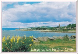 Largs, On The Firth Of Clyde, Scotland -  Whiteholme 8301, Posted Glasgow 1995 - Ayrshire