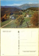 Ak Italien -  Hafling - Dorf  -  Panorama - Bolzano