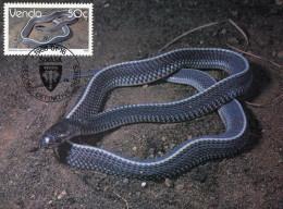 VENDA 1986 MAX.CARD With SNAKE. - Slangen
