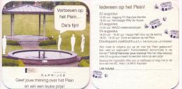 #D90-154 Viltje Over Kaprijke - Sous-bocks