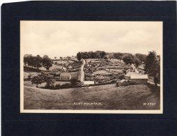 49637     Regno  Unito,  Flint  Mountain,  NV - Flintshire