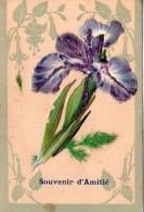 Belle Carte Brodée.. Souvenir D'Amitié.. Pensée