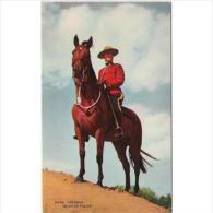 CND1774C-LFTD3951TTSC.Tarjeta Postal De CANADA.Policia Montada.con CABALLO.en El Campo.arboles - Postales