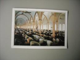 BAHREÏN MANAMA MOSQUEE - Bahreïn