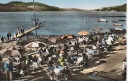 38  LAC  DE PALADRU-CHARAVINES   Plage Beau Site - Paladru
