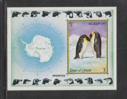 N641.-. Umm-Al-Qiwain #BK51 MNH 1972 Penguins / Pinguinos  S/S SUPERB! - Penguins