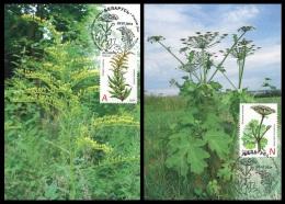 Maxicard Belarus 2014 Mih. 1021/22 Flora. Invasive Plants - Bielorussia