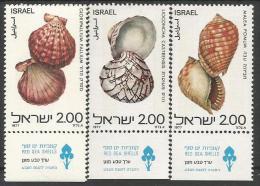 IS 1977-726-8  SHELL, ISRAEL,1 X 3v, MNH - Israel