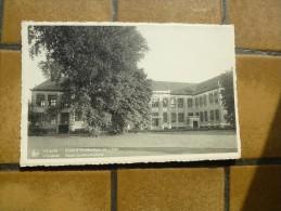 Vilvoorde : Staatstuinbouwschool - Vilvoorde