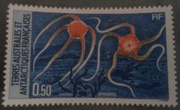 TAAF  -   Ophures - Terres Australes Et Antarctiques Françaises (TAAF)