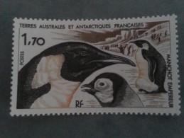 TAAF  -  Manchot  Empereur - Terres Australes Et Antarctiques Françaises (TAAF)