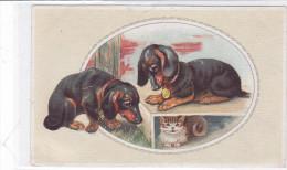 CARD   CANE BASSOTTO - BASSET SAUS-SAGE DOG   GATTO     FP-V-2 -0882 21880 - Chiens