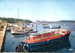 N°40042 GF -cpsm Le Brusc Sur Mer -bateaux- - Bateaux