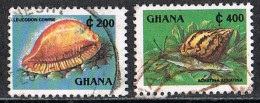 L072 FAUNA SCHELPEN SHELLS COQUILLAGES MUSCHEL GHANA 1991 Gebr / Used - Coquillages