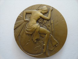 MEDAILLE EN BRONZE SIGNE RAY . PELLETIER - Jetons & Médailles