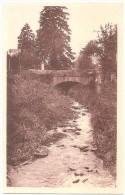 Dépt 52 - VAUX-SOUS-AUBIGNY - Pont Sur Le Badin - (CPSM 9 X 14,1 Cm) - France