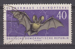 DDR Duitsland, Deutschland, Germany, Allemagne Gestempeld, Used ; Vleermuis, Chauve-souris, Murcielago, Fledermause, Bat - Vleermuizen
