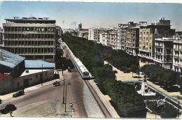 X  394 TUNIS AVENUE JULES FERRY 1955 - Tunisia
