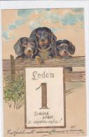 CARD CANE BASSOTTO - BASSET SAUS-SAGE DOG BUON ANNO  RILIEVO FP-V-2 -0882 21878 - Hunde