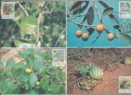 S.Africa: 1989 - 90, 17 Sets Maxi-cards, Includes  Cars, Endangered Birds - Venda