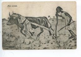 Sahara Occidental  : Moro Arando - Illustrateur Gravure D. Mollon Ou Mullon - éd Melilla - Sahara Occidental