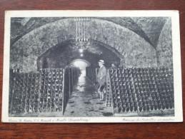 Caves St. Martin ( Wilca N° 8 ) Anno 19?? ( Zie Foto Voor Details ) - Remich