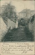 BELGIQUE CHIMAY / Le Terne De La Fontaine / - Chimay