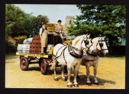 Belle CPM ann�es 1980, brasserie Adnams, Southwold, Suffolk, Angleterre, attelage