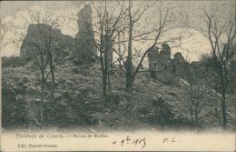 BELGIQUE COUVIN / Ruines De Saulour / - Couvin