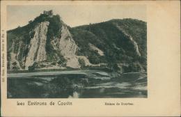 BELGIQUE COUVIN / Les Ruines De Dourbes / - Couvin
