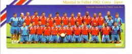 COSTA RICA    2002     FIFA World Cup In KOREA - JAPAN 2002 Postcards - Costa Rica
