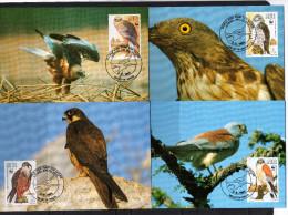 Malte: 1991 4 Très Belles Carte Maximum WWF Rapaces Protégés - Eagles & Birds Of Prey