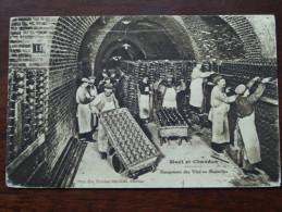 Moët Et Chandon Rangement Des Vins En Bouteilles - Anno 19?? ( Zie Foto Details ) !! - Vignes