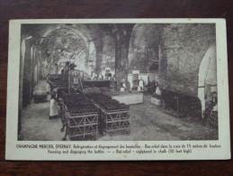 Champagne MERCIER Epernay - Anno 19?? ( Zie Foto Details ) !! - Vignes