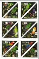 Surinam / Parrots