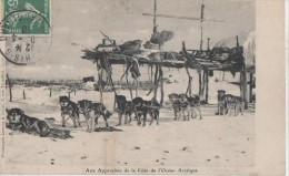 AUX APPROCHES DE LA COTE DE L' OCEAN ARCTIQUE - Monde