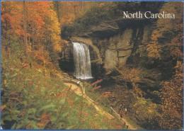 ETATS UNIS / UNITED STATES - Glass - Falls North Carolina - Etats-Unis