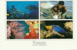 Vanuatu - CPM Neuve ** - Unused Postcard - Diver's Paradise - Faune Marine - Coral Life - Reef - Plongée - Diving - Vanuatu