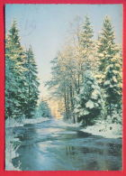 154687 / New Year Nouvel An Neujahr - WINTER RIVER TREE - Yugoslavia Jugoslawien Yougoslavie