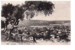 REF 200 CPA Algerie Alger vue entre les oliviers