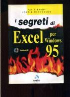 X Burns - Nicholson I Segreti Di Excel Per Windows 95 Apogeo - Informatica