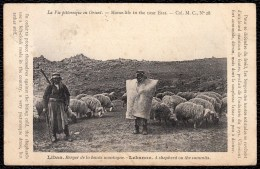 LEBANON - A SHEPHERD ON THE SUMMITS - Cartes Postales