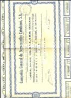 ACCIONES   FF.CC.  CATALANES - Acciones & Títulos
