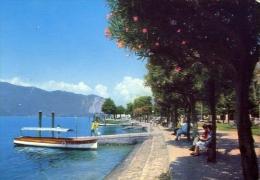 Pallanza - Lungolago - Lago Maggiore - 238 - Formato Grande Non Viaggiata - Verbania