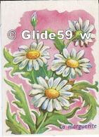 Image - La Marguerite - Schede Didattiche