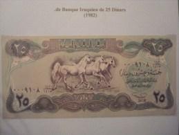 CHEVAUX . BILLET DE BANQUE IRAQUIEN DE 25 DINARS (1982) . NEUF
