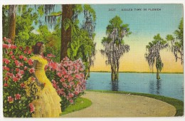 S1324 - Azalea Time In Florida - Etats-Unis